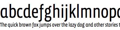 Vista Sans Narrow Web Font